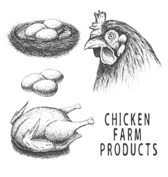Set of monochrome chicken farm products vector