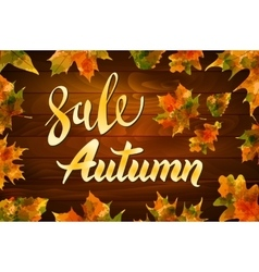 Autumn special sale vintage typography vector