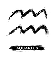 Aquarius symbol vector