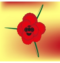 red bright rose vector image