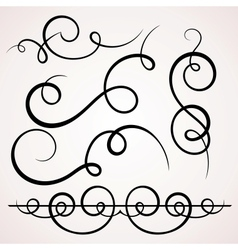 Calligraphic decorative elements vector