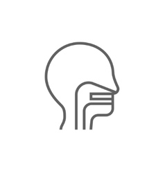 Human head with ear nose throat system line icon vector