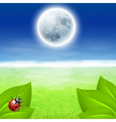 Background with fullmoon green grass and ladybird vector