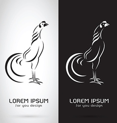 Image of an rooster design vector