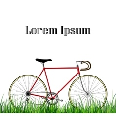 Bicycle isolated on white background with gras vector