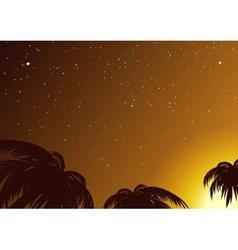 Starry sky amidst tropical palms vector