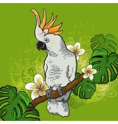 Cockatoo parrot on a branch with flowers vector image vector image
