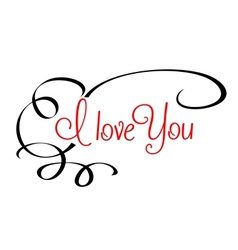 I Love You header with calligraphic elements vector image vector image