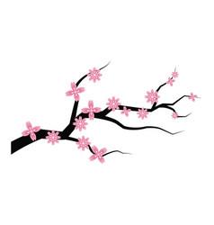 Sakura flower branch spring japanese flora vector