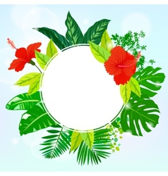 Card with tropical flowers palm and banana leaves vector