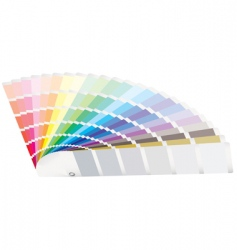 color guide perspective vector image