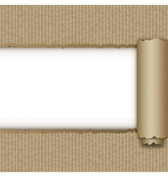 Torn brown paper box vector