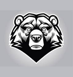 Bear head vector