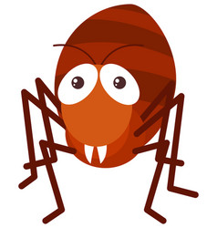 red ant on white background vector image vector image