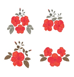 Set of Hibiscus for your Design vector image