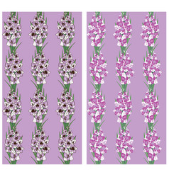 Seamless pattern flowers gladiolus purple vector