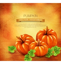 Vintage background with three pumpkins vector