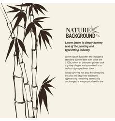 Bamboo banner set vector image vector image