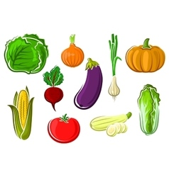 Isolated ripe healthy farm vegetables vector