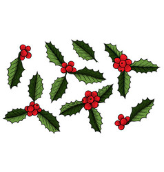 set of christmas mistletoe vector image
