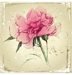 retro-styled hand drawn peony flower vector image