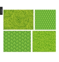 Foliage seamless patterns set vector image