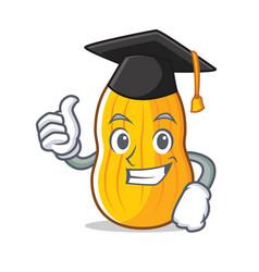 Graduation butternut squash character cartoon vector