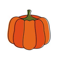 pumpkin fruit icon image vector image vector image