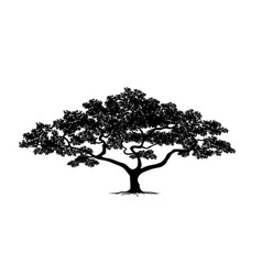 Silhouette tree set vector