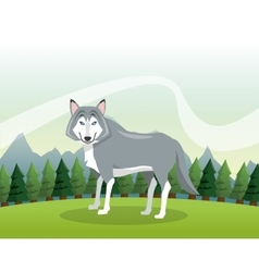 Wolf icon Landscape background graphic vector image