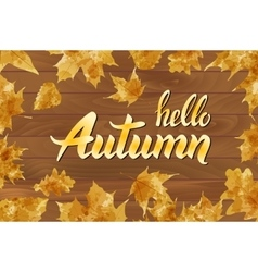 hello autumn text on wooden background orange leaf vector image vector image