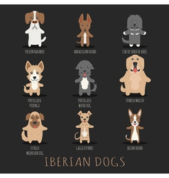Set of iberian dogs  eps10 format vector