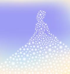 dreamy princess sparkling silhouette vector image vector image