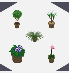 isometric flower set of flowerpot plant vector image vector image