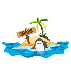 shark swimming at sea vector image