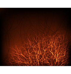 shiny trees vector image vector image