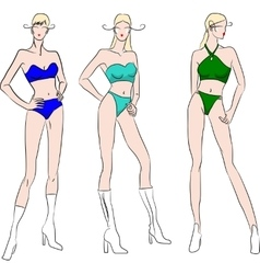 Set of seasonal ladies swimsuits vector