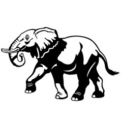elephant black white vector image