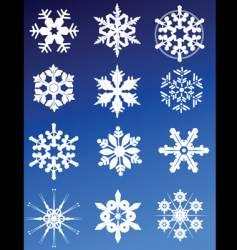 twelve snowflakes vector image