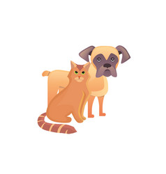 Cute home pets cartoon cat and dog best friends vector