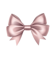 Shiny light pink satin gift bow isolated vector