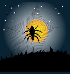 Halloween spider background vector