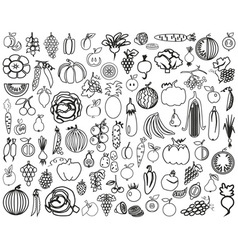 Vegetables and fruits contour vector
