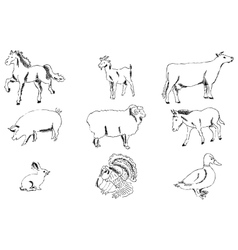 Pets Farm Pencil sketch by hand vector image