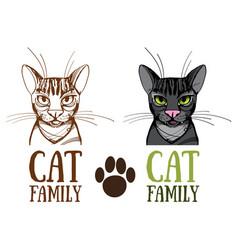 cat family logo vector image