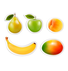 Set of flat fruit stickers vector