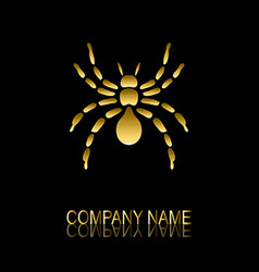 golden spider symbol vector image