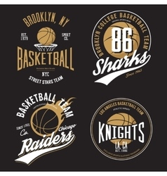 T-shirt design basketball fans for usa new york vector