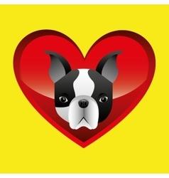 french bulldog face icon design vector image