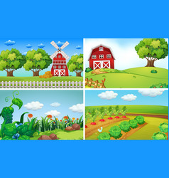 Background scenes with vegetables on the farm vector